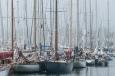 8mR racing yachts